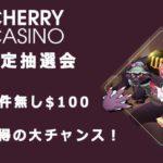【チェリーカジノ】出金条件なしのキャッシュ$100が当たる!チェリードリーム抽選会