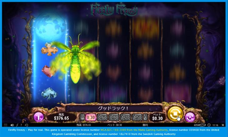 Firefly Frenzy01