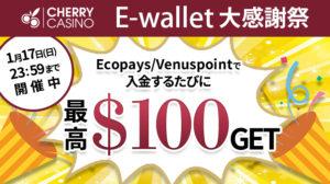 【チェリーカジノ】入金するたびに最高100ドルが貰える!『E-wallet大感謝祭』開催中!