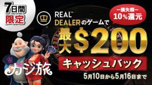 【カジ旅】テーブル好き集まれ!!『Real Dealer社』ゲームプレイの損失額10%還元キャンペーン開催中!